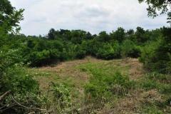 Land development 1